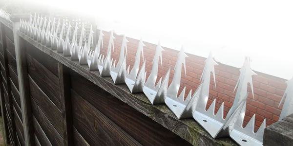 Razor Fence Spikes, Bird Spikes and Wall Spikes